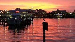 Basking in the rich twilight of a sunset, a bird sits atop a post near a dock.